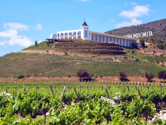 viña Indómita, Chile, vinícolas de Casablanca, vinícolas no Chile
